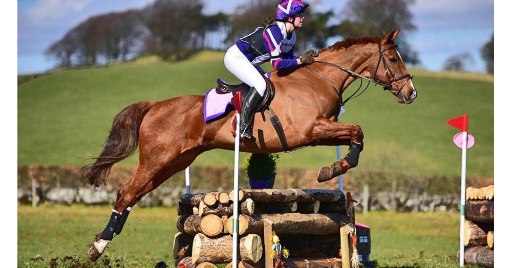 Antioxidantes en la dieta del caballo de deporte