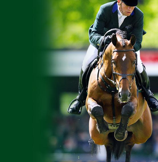 para-caballos-st-hippolyt-verde